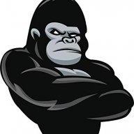 GorillaLeadz