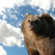 SkyGrizzly